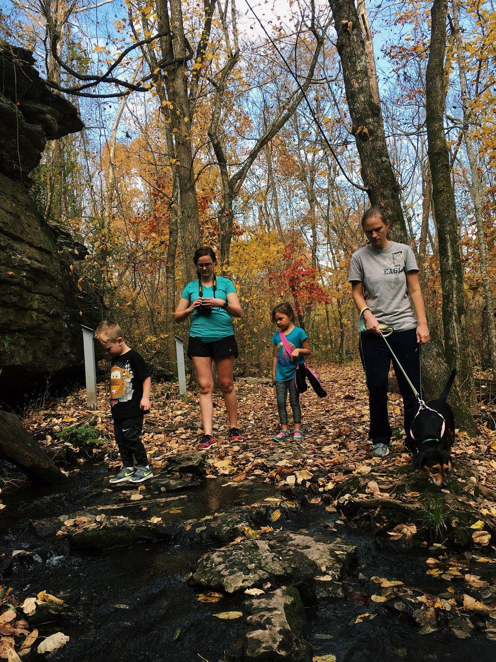 hike it baby rei