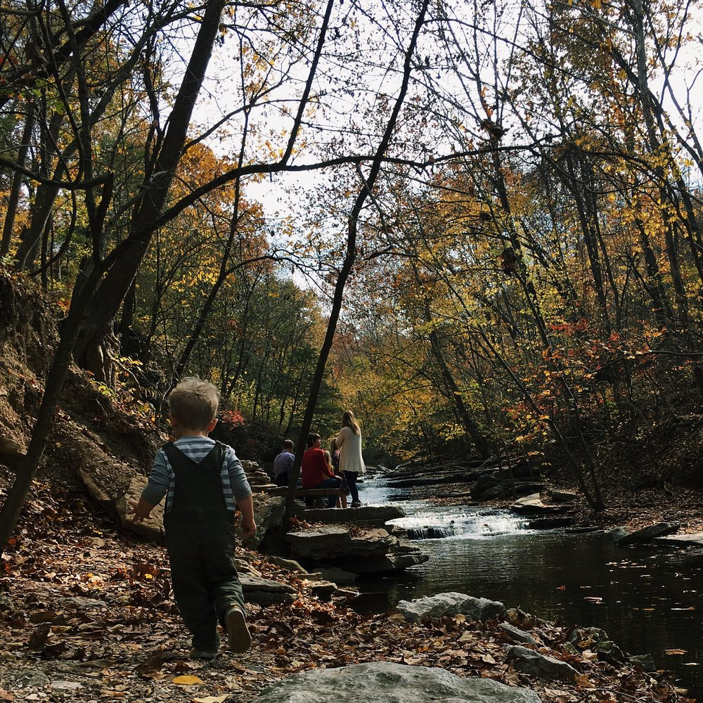 Tanyard creek northwest arkansas hiking trail family friendly