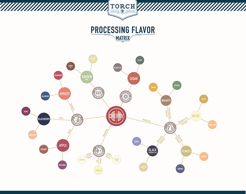 Torch Processing Flavor Matrix.jpg