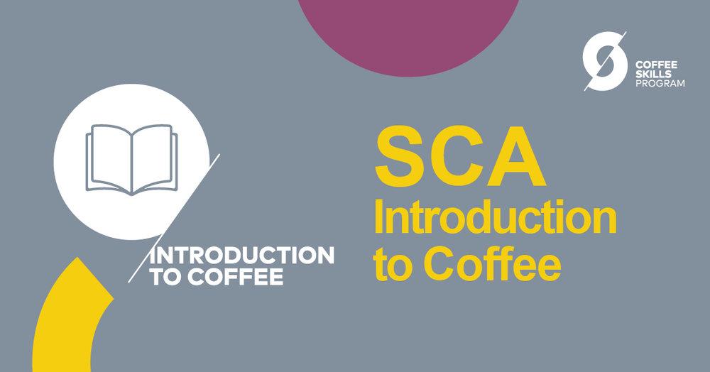 SCA-Course-06.jpg
