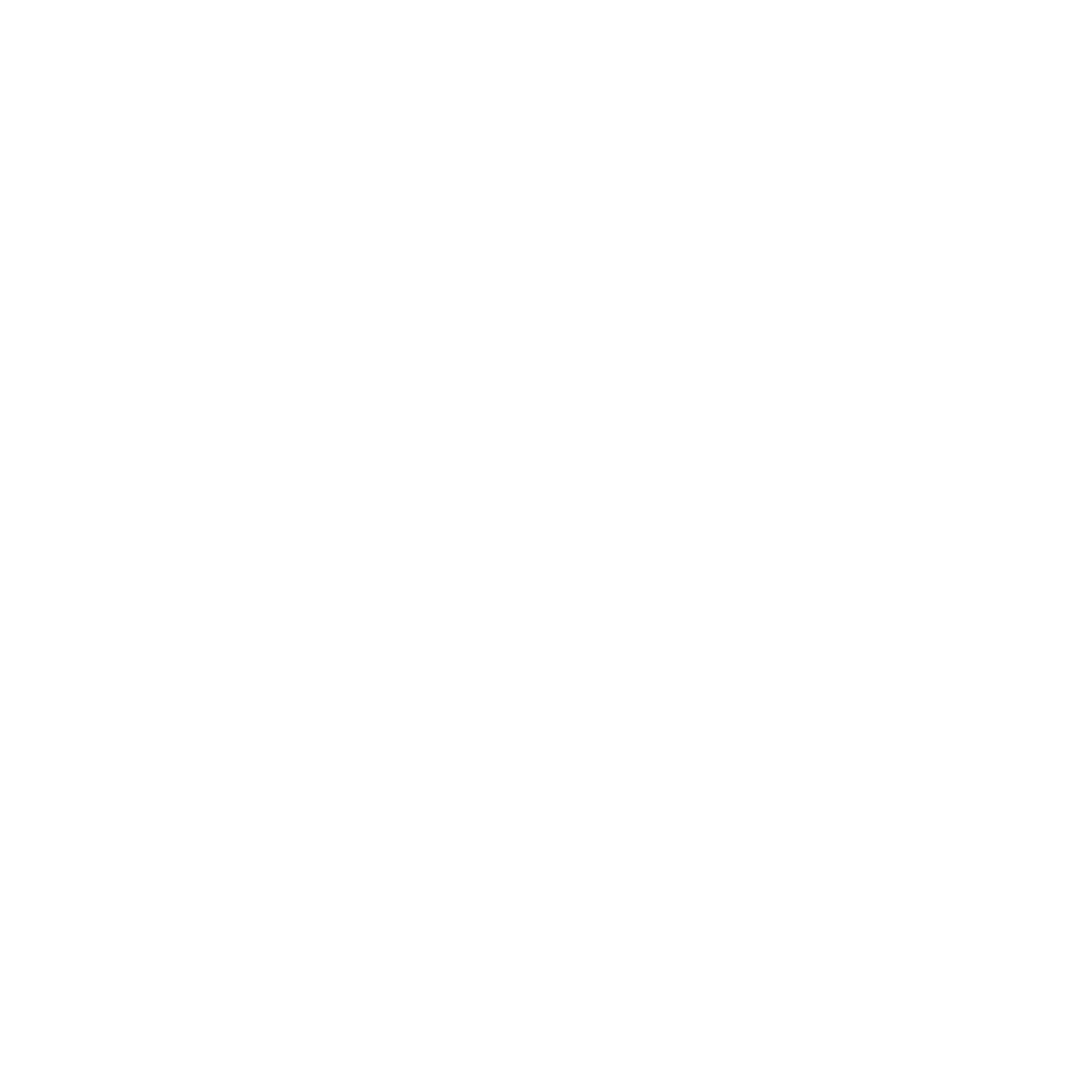 Spirit of the Bear