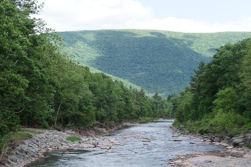 Esopus Creek.jpg