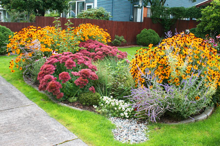Rain Garden - Rain Dog Designs, Gig Harbor, WA http://raindogdesigns.com/wordpress/?page_id=1877