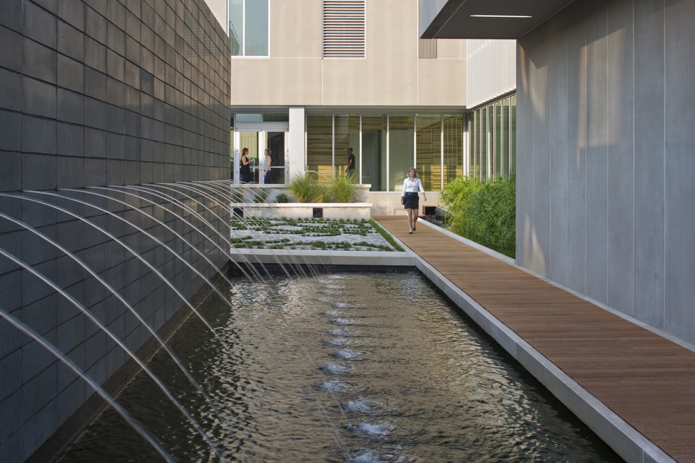 Eskew+Dumez+Ripple designed a rain garden capturing the rooftop rainwater in the courtyard of the Bioinnovation Center in New Orleans. Source: Eskew+Dumez+Ripple