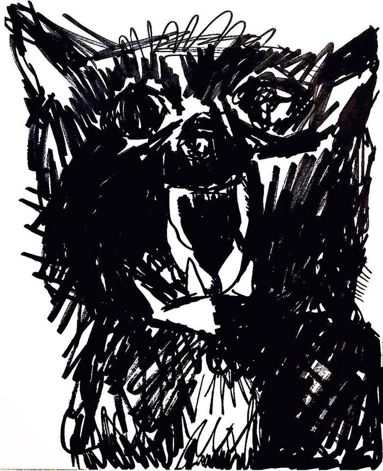 Hissing Cat Sketch