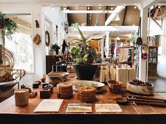 Saturday ✨ we are open 11-5 today, come say hello 👋🏻 // #roadtripshop #lakearrowhead #plants #vintage #incense