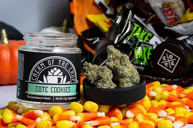 If only there was a neighborhood for adults to trick or treat & get infused edibles & prerolls all night long 🤷♂️🤣😂 Happy Halloween 🎃 from COTC! 👻 _____________________________________________________________ #CreamOfTheCrop #Fire #MMJ #HighTimes  #Indica #CannabisCommunity #Sativa #Indoor #California #THC #Frost #SmokeWeedEveryDay #Terps #WhiteAshGang #PlayingWithFire #Exotics #AllGasNoBrakes #LosAngeles #PurpleKush #FrostedFlakes #BetterThanGood  #Cookies #F1Durban #DurbanPoison #FreshBakedCookies #Halloween #TrickOrTreat #HellaWeed #Baked
