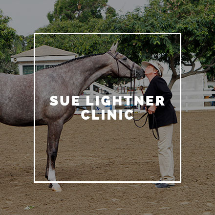 lightner-clinic-square.jpg