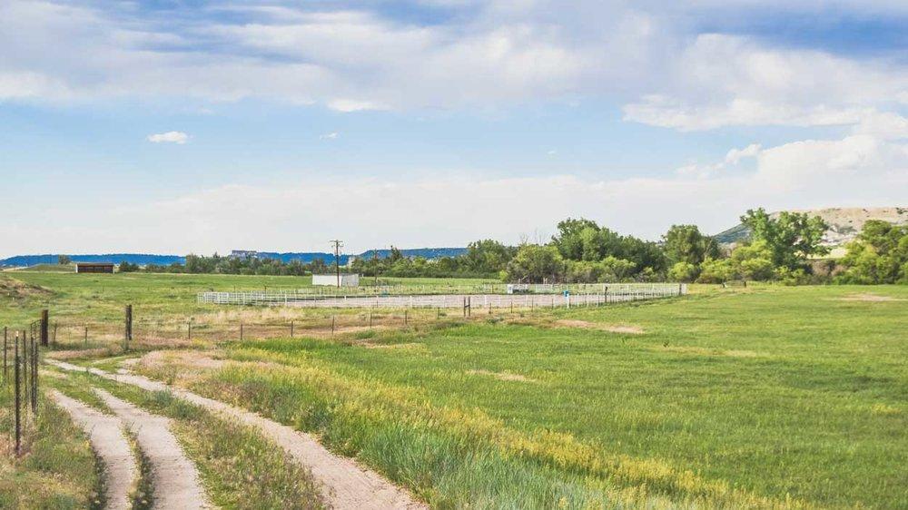 pasture+outdoor-arena.jpg