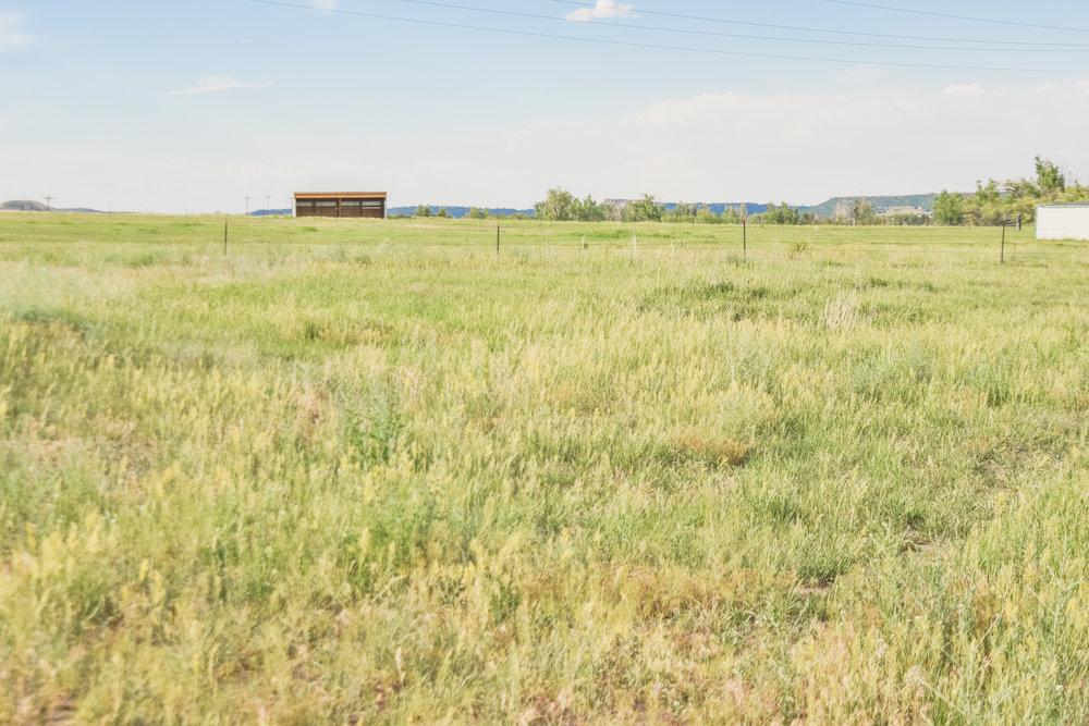 -pasture-1.jpg