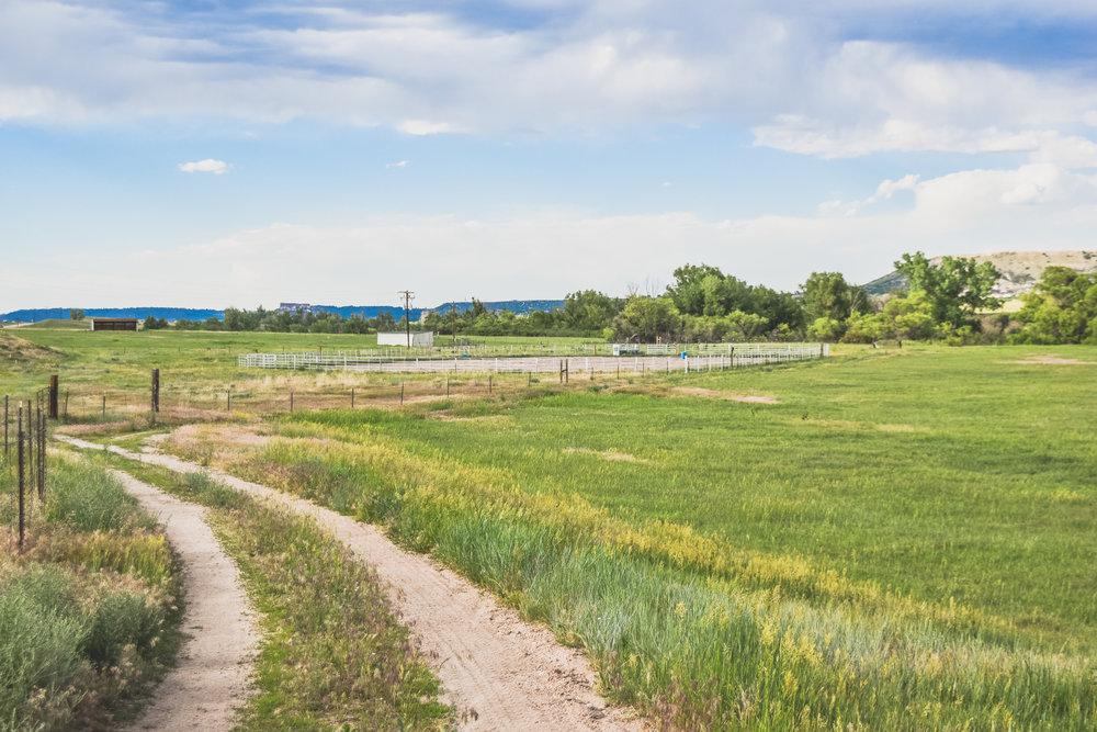 -pasture-1-2.jpg