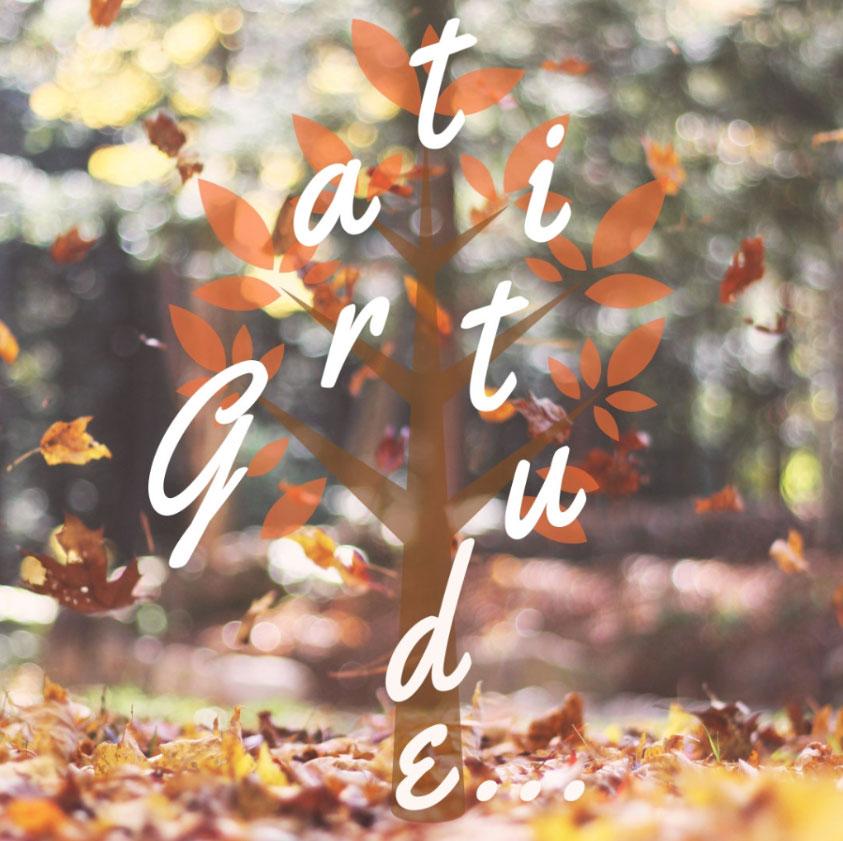 gratitude-not-the-jounral.jpg