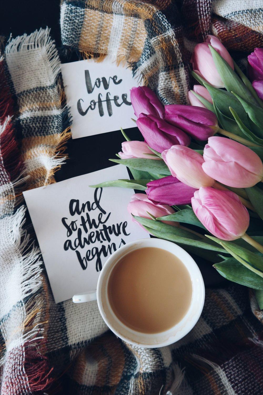 beverage-caffeine-caligraphy-291632.jpg