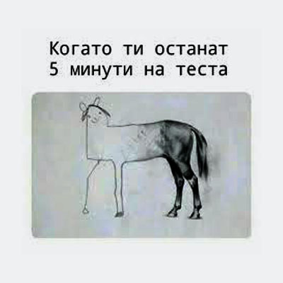 _05.jpg