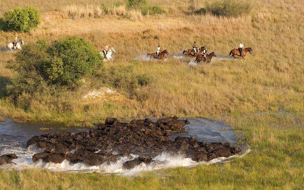 horseriding-at-andbeyond-xaranna.jpg