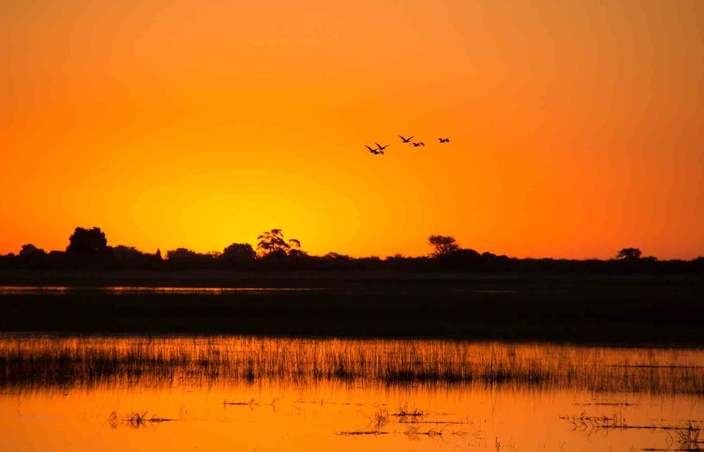 Last sunset over the Chobe River