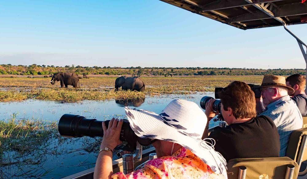 Photo-safari on the Chobe