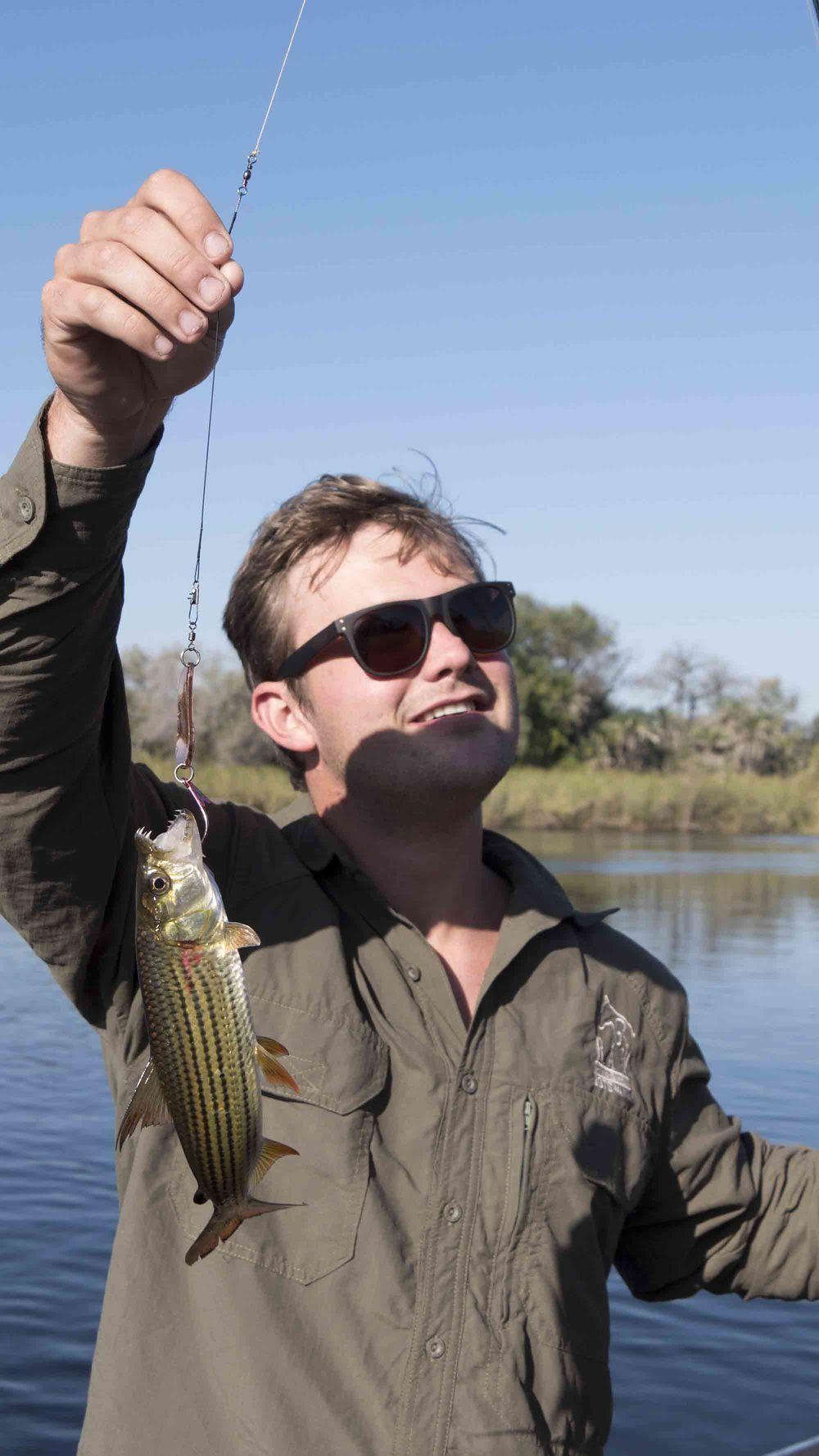 Franks fish...