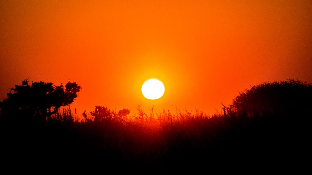 Red Kalahari sky