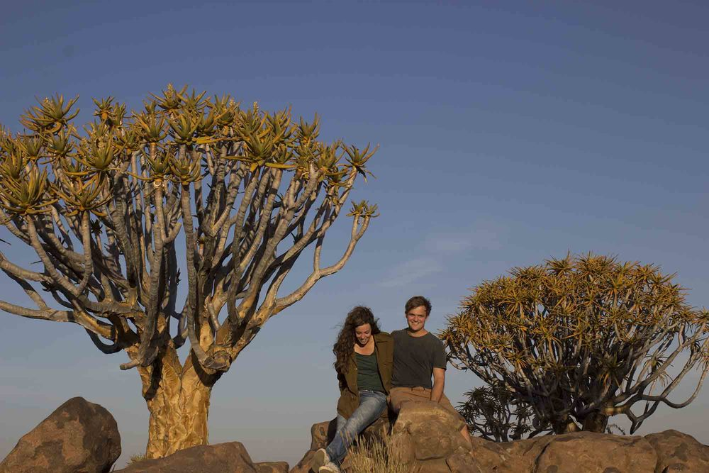 Frank and Gesa spend the afternoon at the quiver tree forest