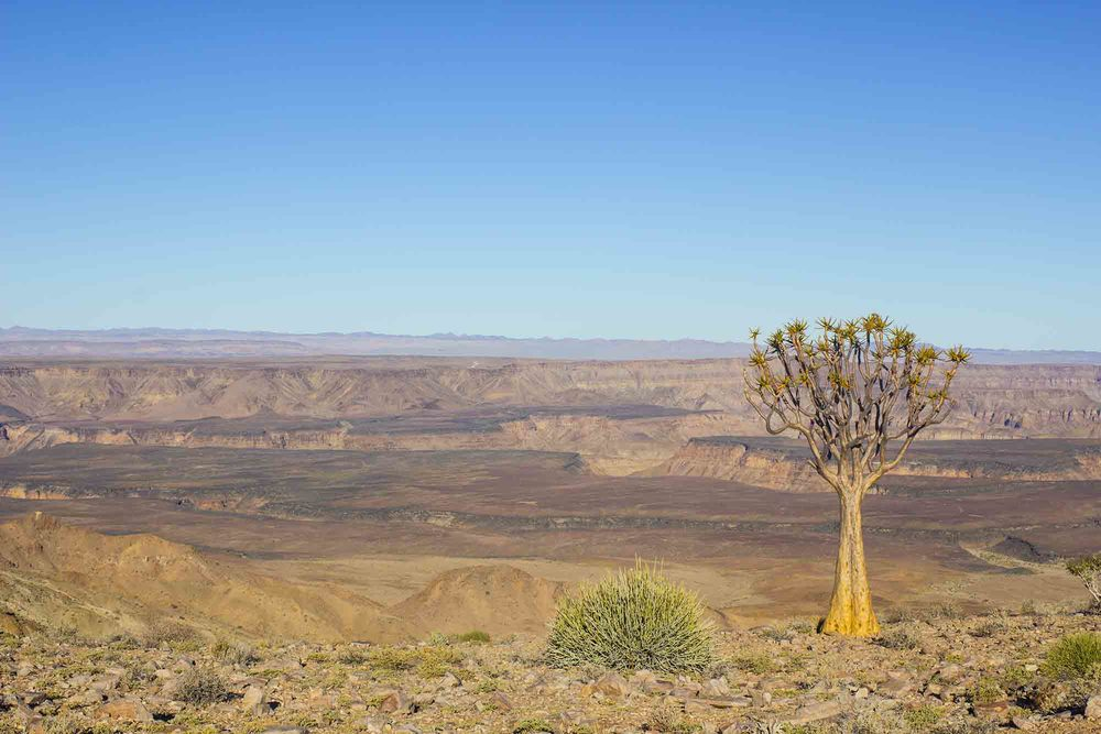 Fish river Canyon - what a stunning place!!