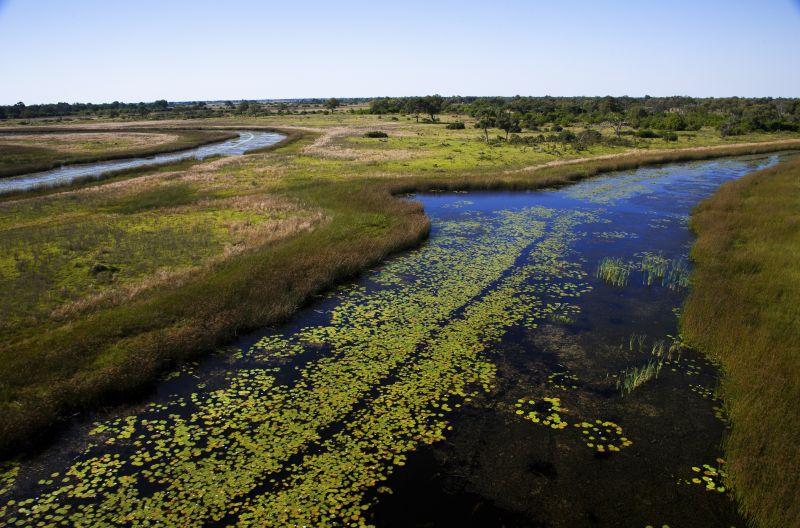 _Copyright_Beverly_Joubert_SelindaAdventureTrail_Landscape_Botswana_4331.jpg