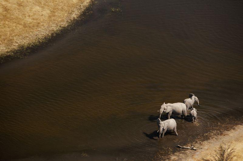 _Copyright_Beverly_Joubert_SelindaAdventureTrail_Landscape_Botswana_4335.jpg