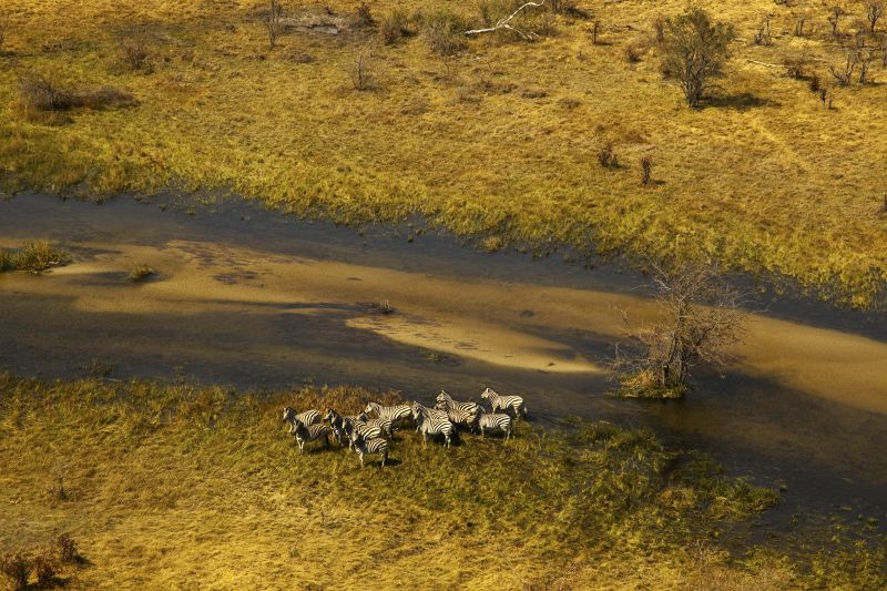 _Copyright_Beverly_Joubert_SelindaAdventureTrail_Landscape_Botswana_4337.jpg