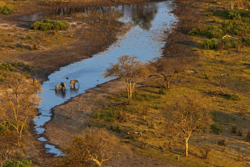 _Copyright_Beverly_Joubert_SelindaAdventureTrail_Landscape_Botswana_4340.jpg