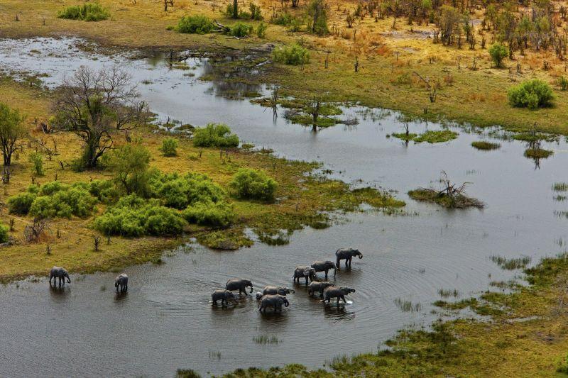 _Copyright_Beverly_Joubert_SelindaAdventureTrail_Landscape_Botswana_4342.jpg