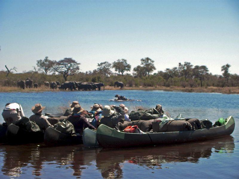 _Copyright_Beverly_Joubert_SelindaAdventureTrail_Safari_Botswana_4381.jpg