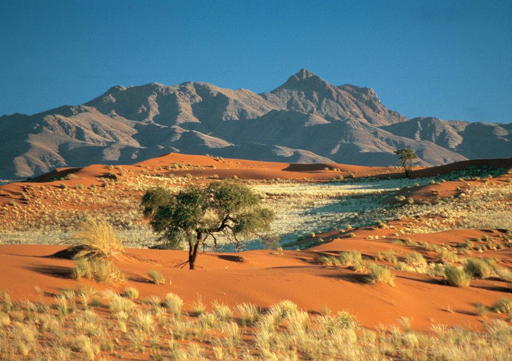 Namib Rand Nature Reserve (1).jpg