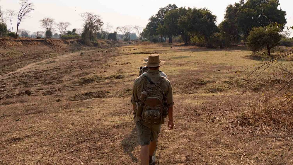 Traditional walking safari