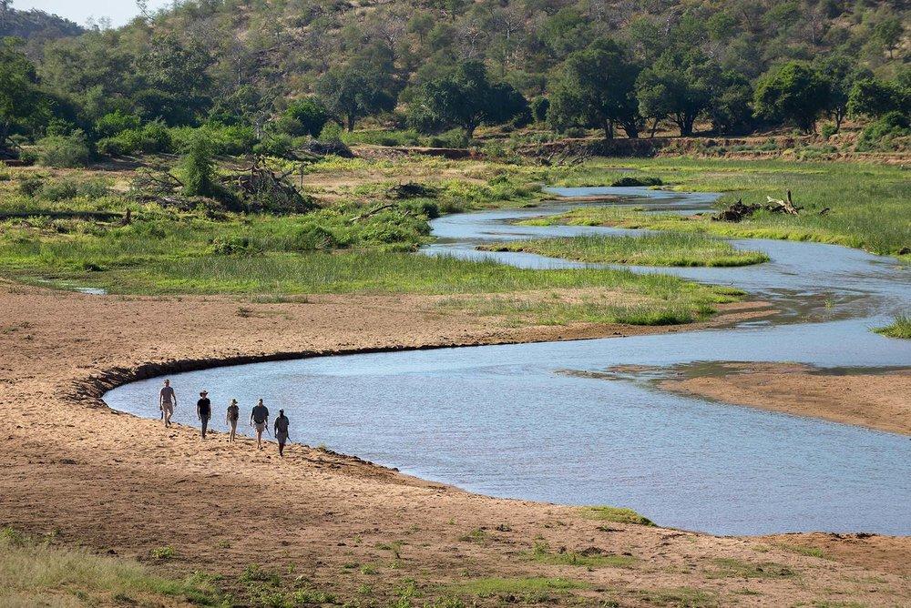 Pafuri_054_river_walk.jpg