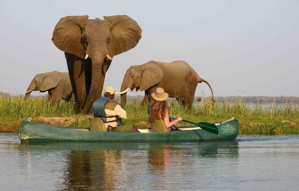 STC Canoeing 6.jpg