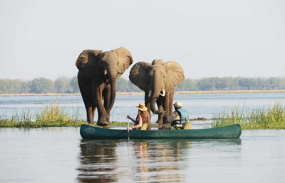 STC Canoeing 3.jpg