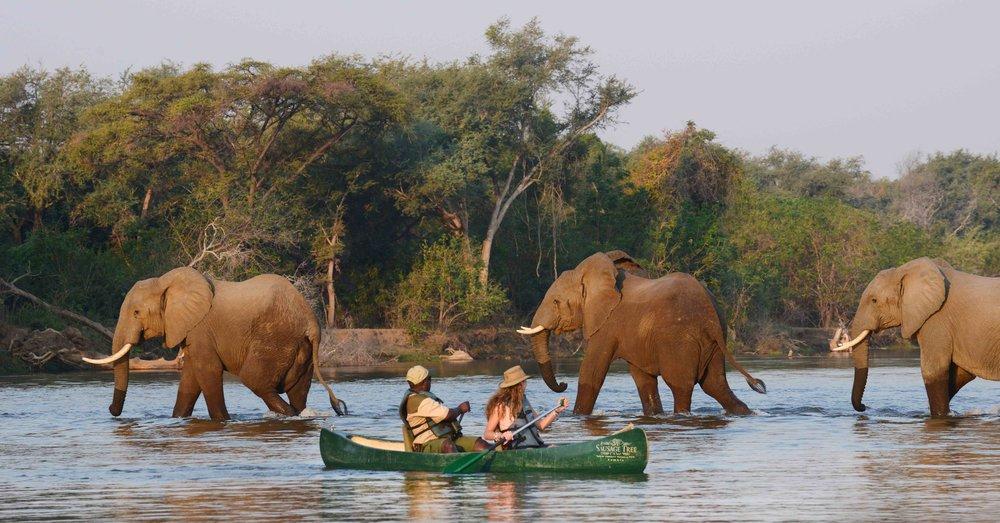 STC Canoeing 5.jpg