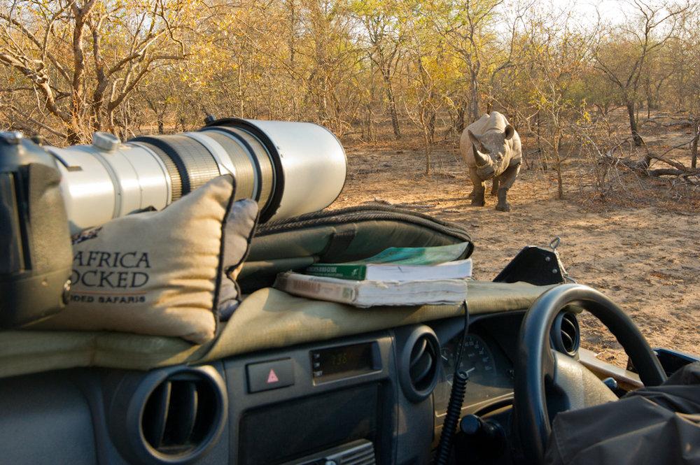 Africa Unlocked Photographing Black Rhino.jpg