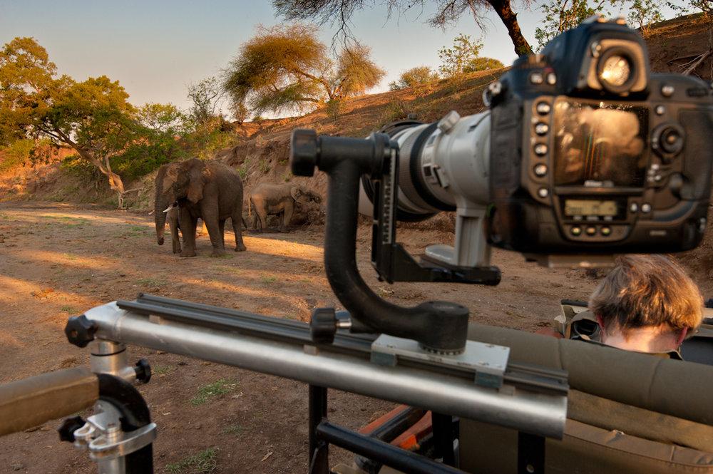 Africa Unlocked Photographing Elephant.jpg