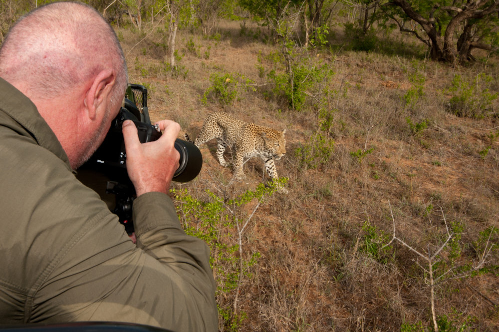 Africa Unlocked Photographing Leopard.jpg
