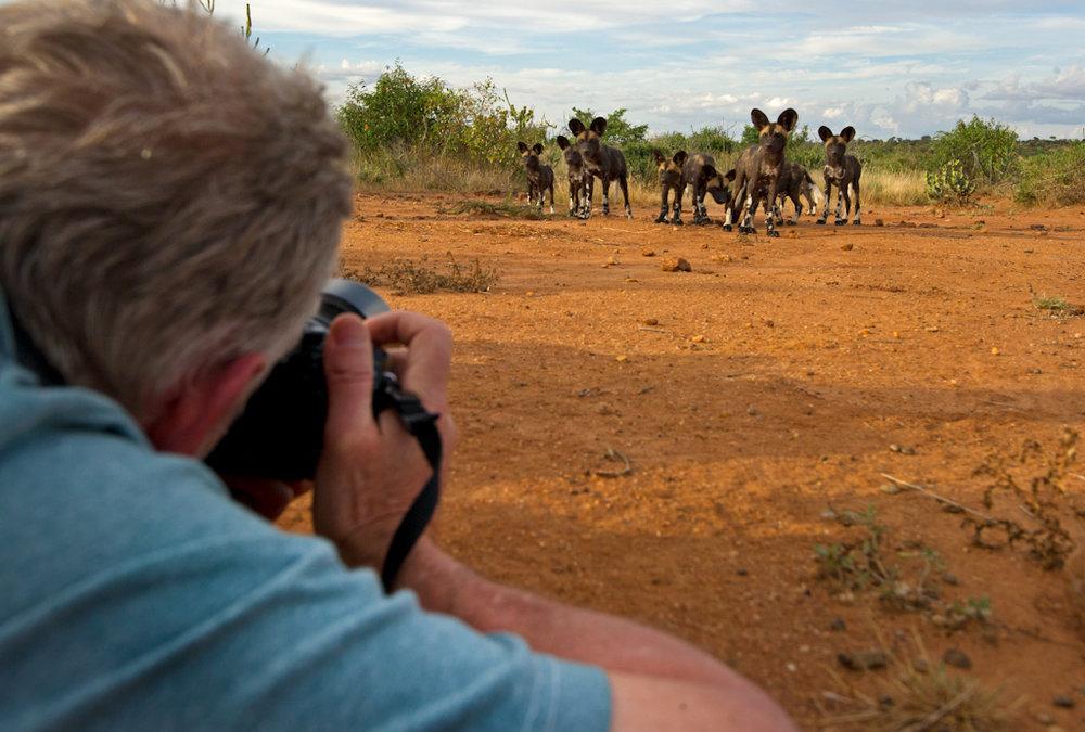 Africa Unlocked Photographing Wilddog (1 of 1).jpg