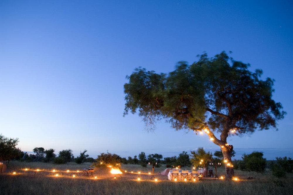 ngala_safari_lodge_bush_dinner2.jpg
