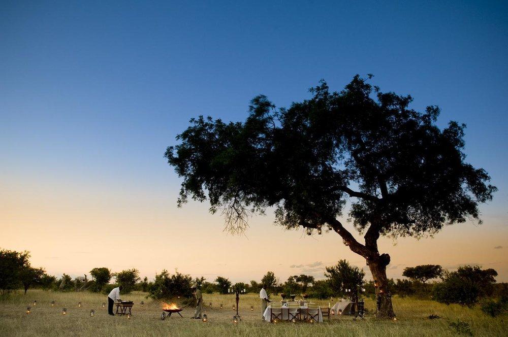 ngala-safari-lodge-bush-dinner.jpg