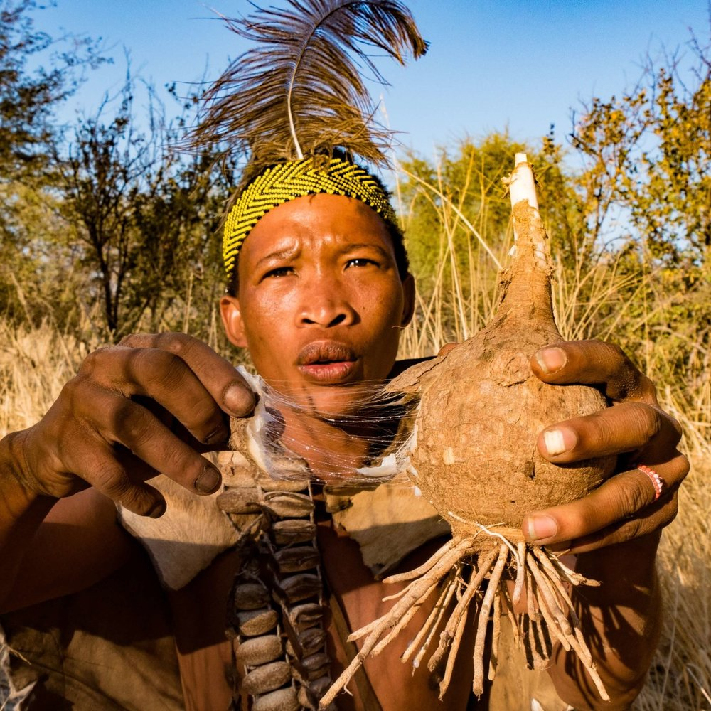Cultural safaris -