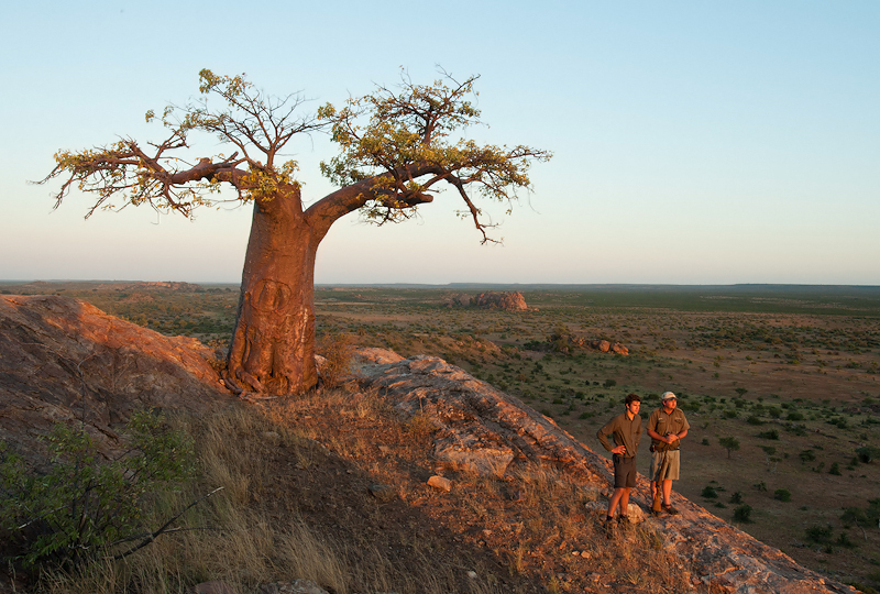 ET Boabab Landscape-2.jpg