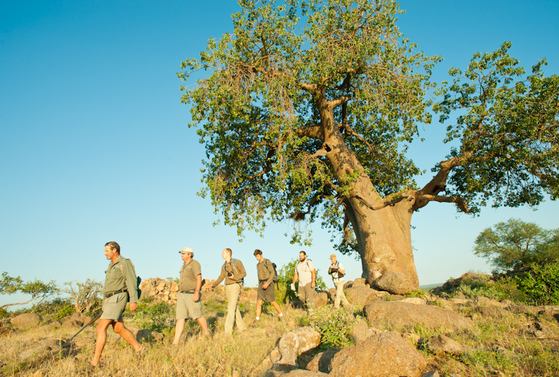 ET Baobab walk 2-.jpg