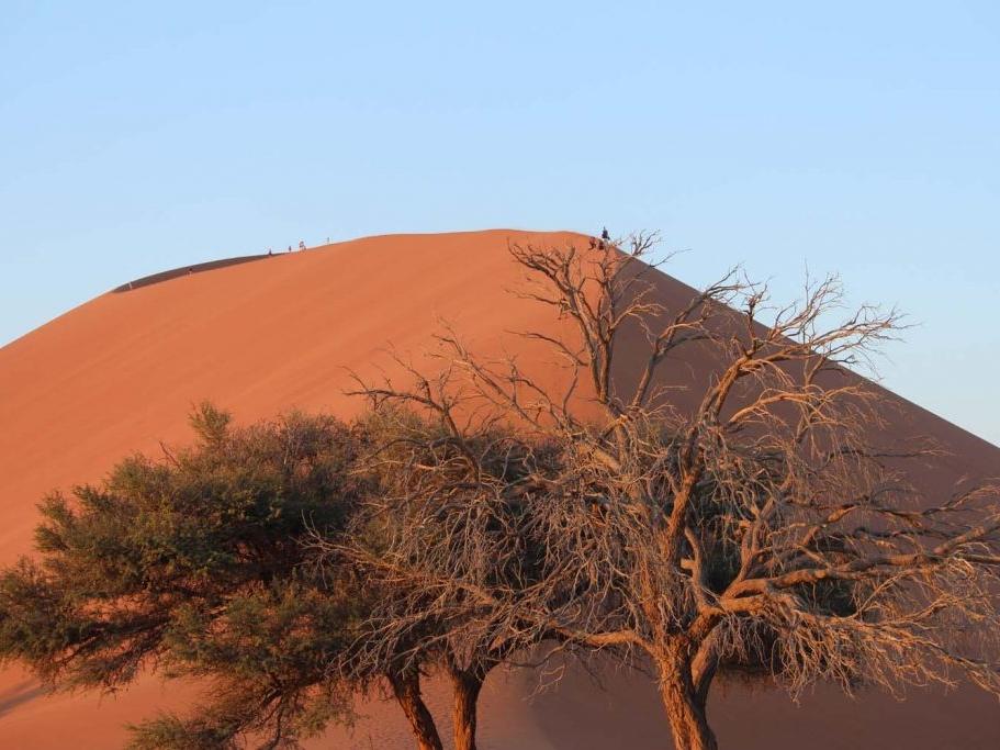 dune-45-1-1024x683.jpg