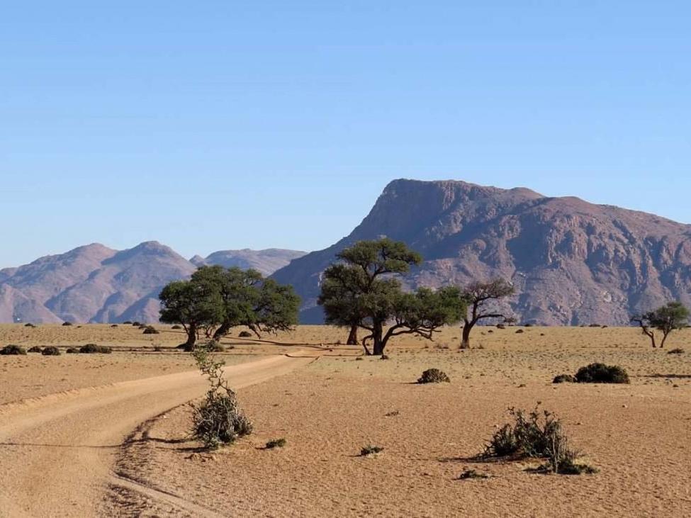 southern-namibia-1-1024x731.jpg
