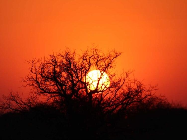 sunset-etosha-1-e1467384917683-1024x563.jpg