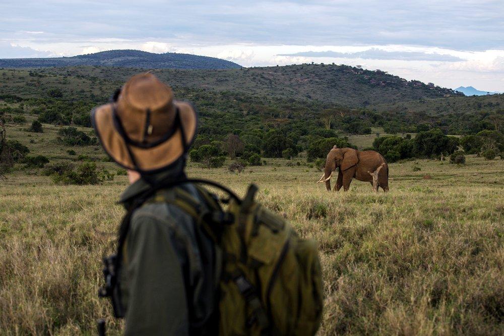 Kenya Borana Nov 2014 Max Melesi (4).jpg